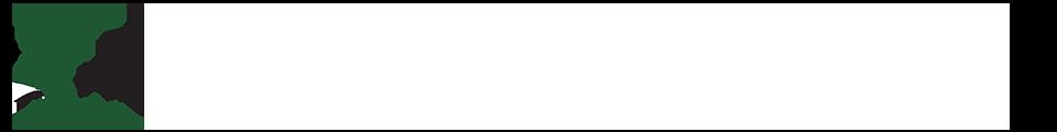 CPANP 2016 Banner Logo